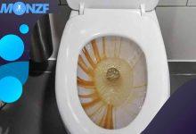 طريقة تنظيف المرحاض من الصدأ